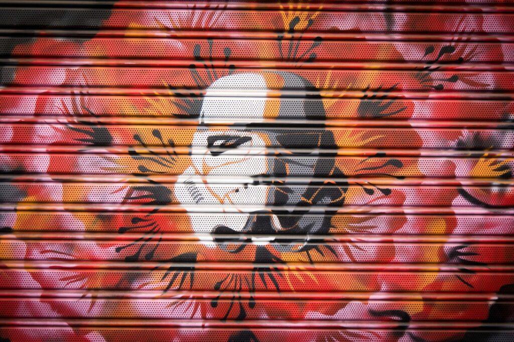 Decorazione saracinesca Graffiart